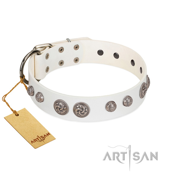 Reliable embellishments on leather dog collar for your doggie