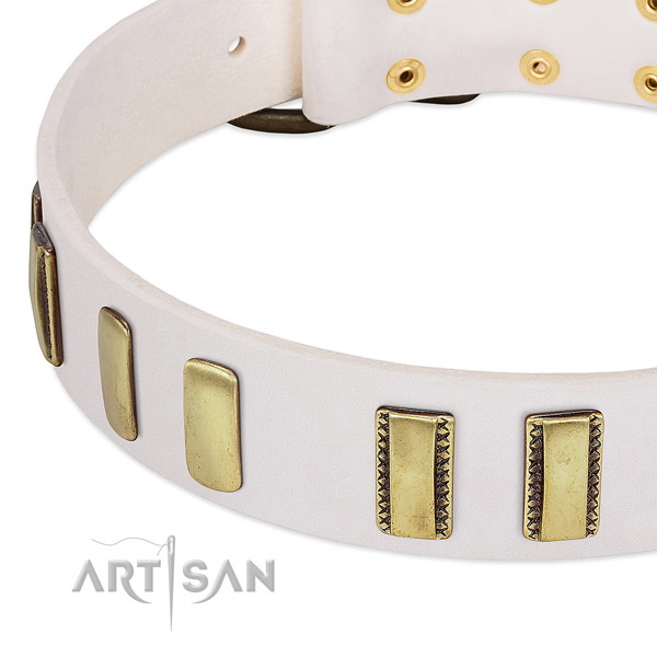 Top rate genuine leather dog collar with embellishments for comfy wearing