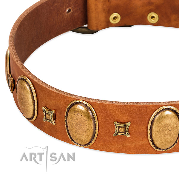 Full grain leather dog collar with durable traditional buckle for everyday use
