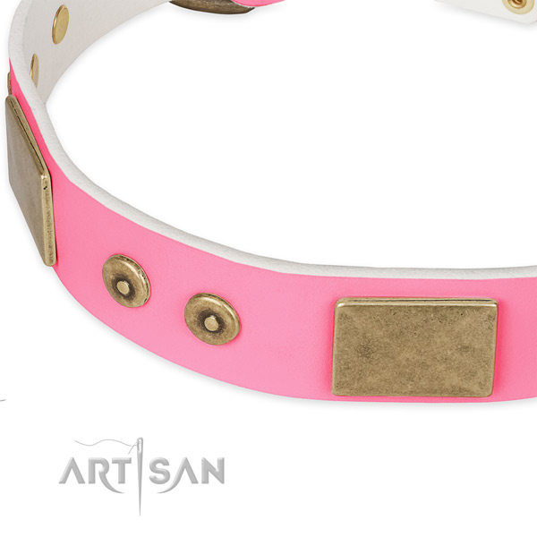Leather dog collar with embellishments for handy use