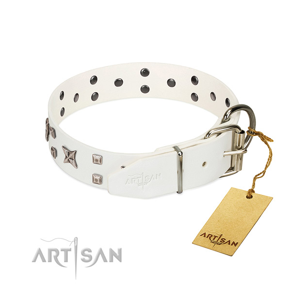 Soft full grain leather dog collar with inimitable studs