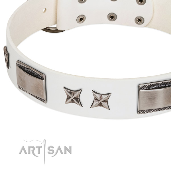 Quality leather dog collar with durable buckle