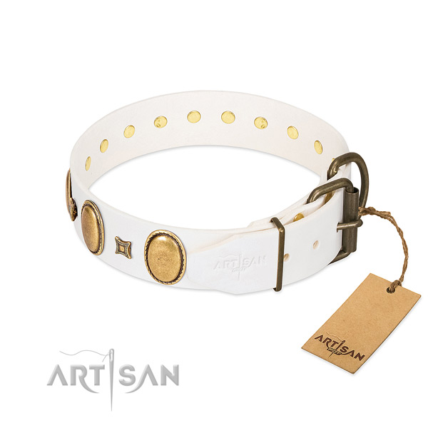 Corrosion resistant embellishments on comfy wearing dog collar
