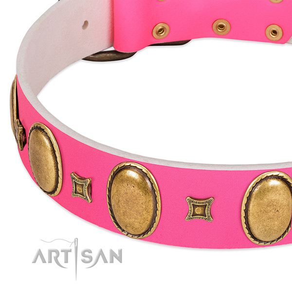 Gentle to touch full grain natural leather dog collar with decorations for everyday walking