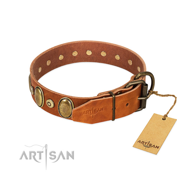 Strong adornments on easy wearing collar for your pet