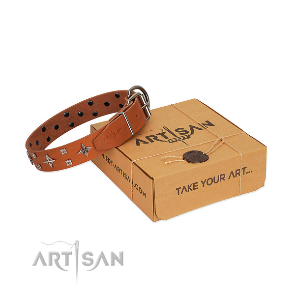 Unique full grain genuine leather collar for your four-legged friend stylish walks