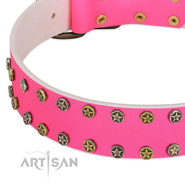 High quality leather collar with embellishments for your dog