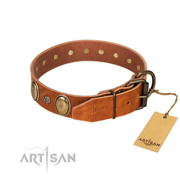 Fancy walking top notch genuine leather dog collar