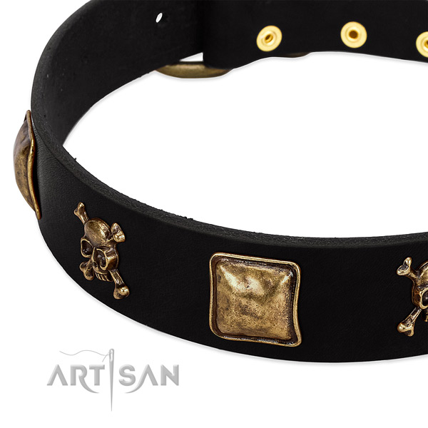 Quality genuine leather collar with studs for your pet