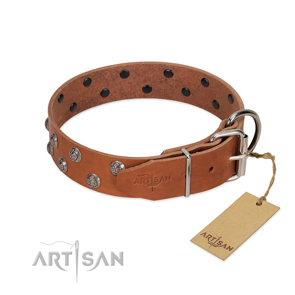 Strong traditional buckle on adorned full grain genuine leather dog collar