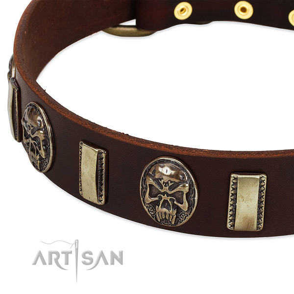 Rust-proof traditional buckle on genuine leather dog collar for your doggie