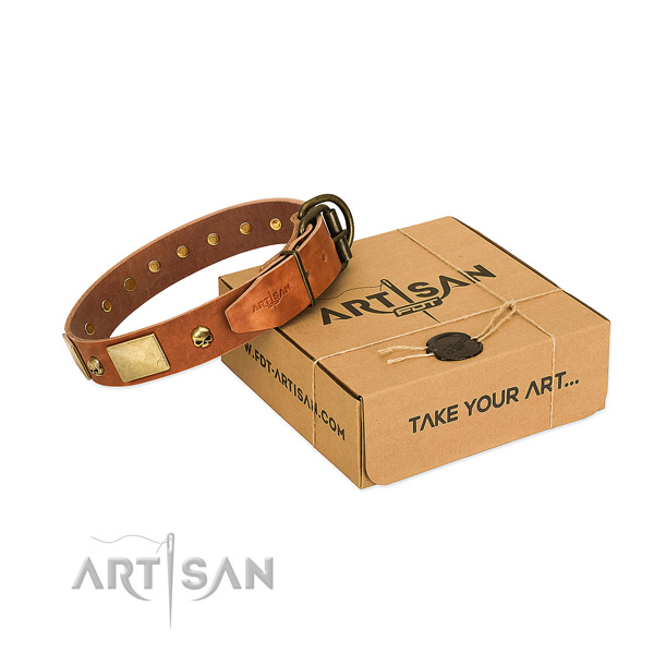 Quality full grain genuine leather collar with corrosion proof adornments for your doggie
