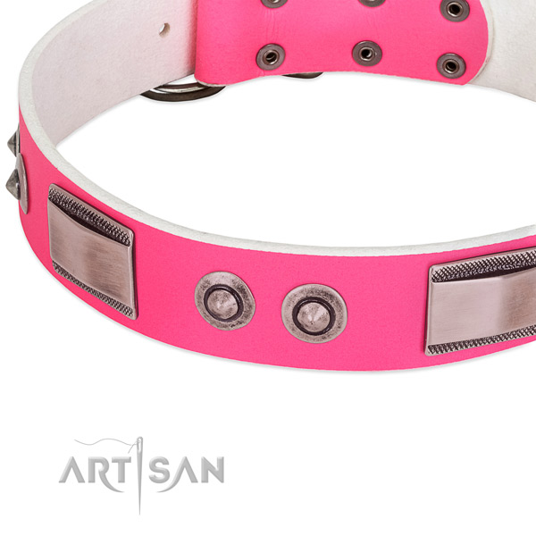 Unusual leather collar with adornments for your canine