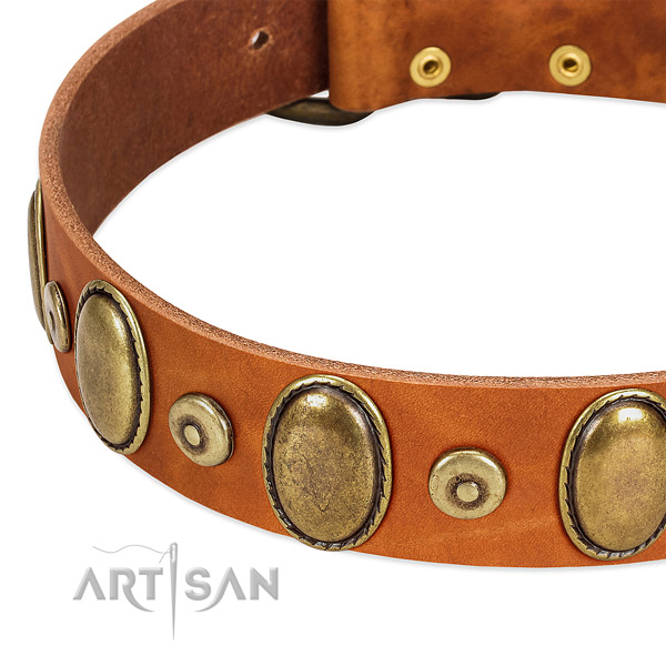 Top notch genuine leather collar for your impressive dog