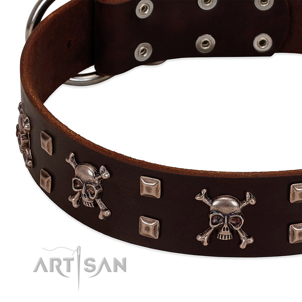 Trendy collar of genuine leather for your attractive doggie