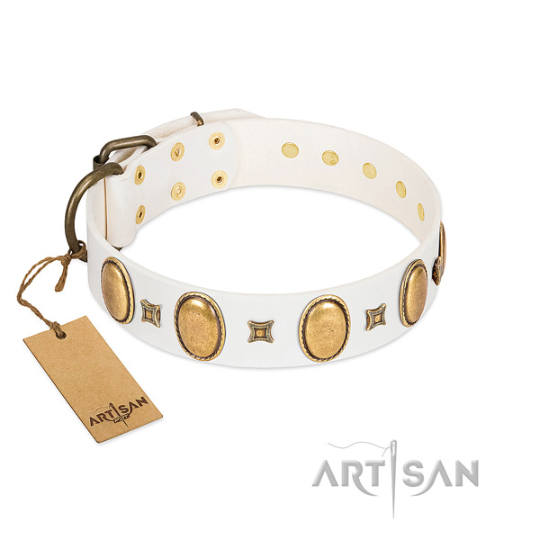 Leather dog collar with designer embellishments for everyday walking
