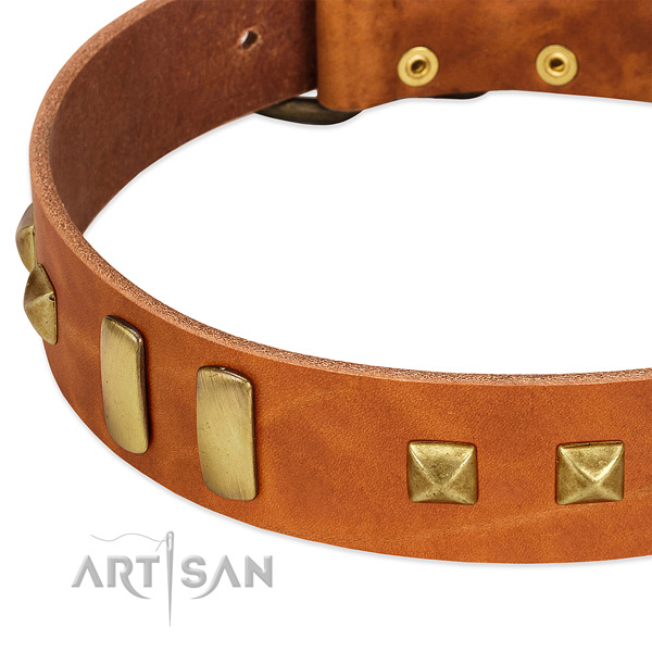 Gentle to touch full grain leather dog collar with decorations for everyday use