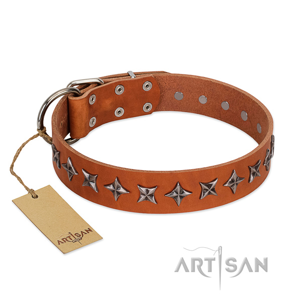 Comfortable wearing dog collar of durable full grain genuine leather with embellishments