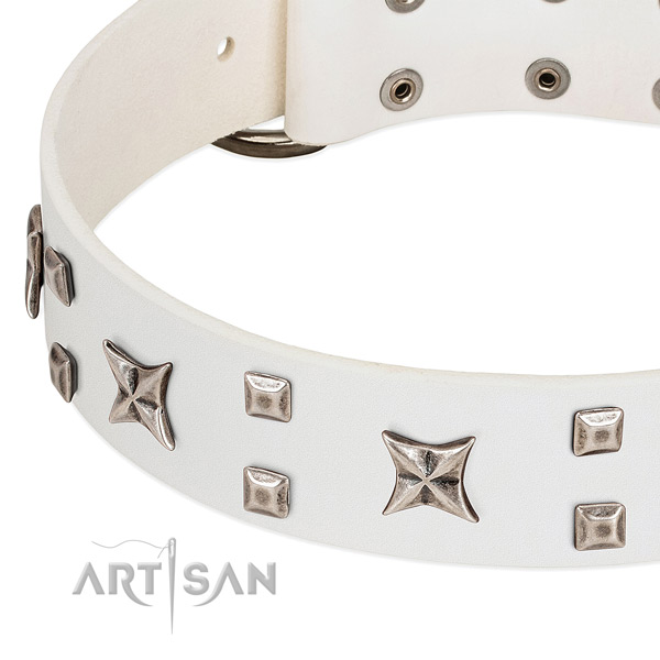Soft genuine leather dog collar with adornments for comfortable wearing