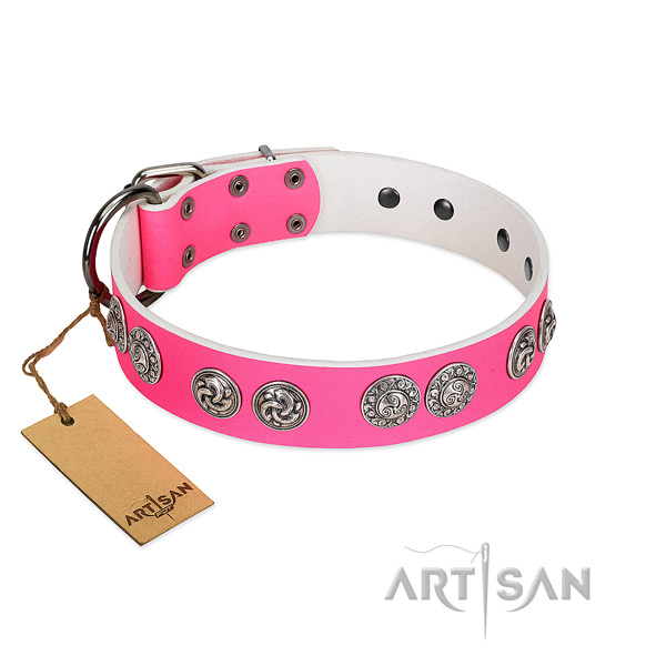 Fashionable natural genuine leather collar for your four-legged friend stylish walks