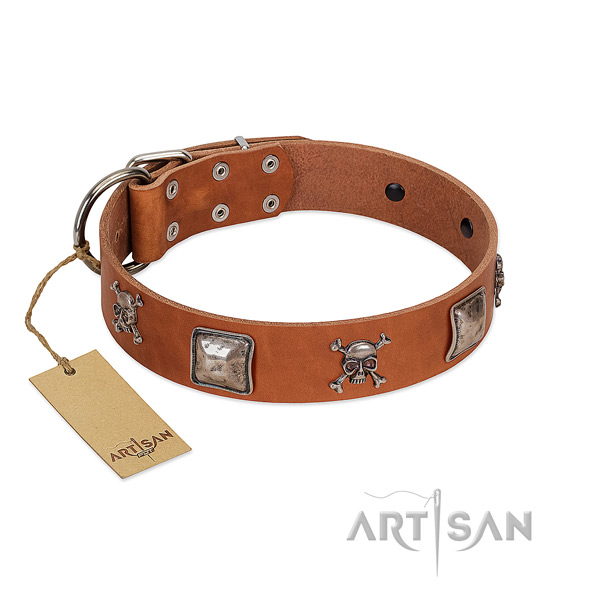 Trendy dog collar handcrafted for your lovely dog