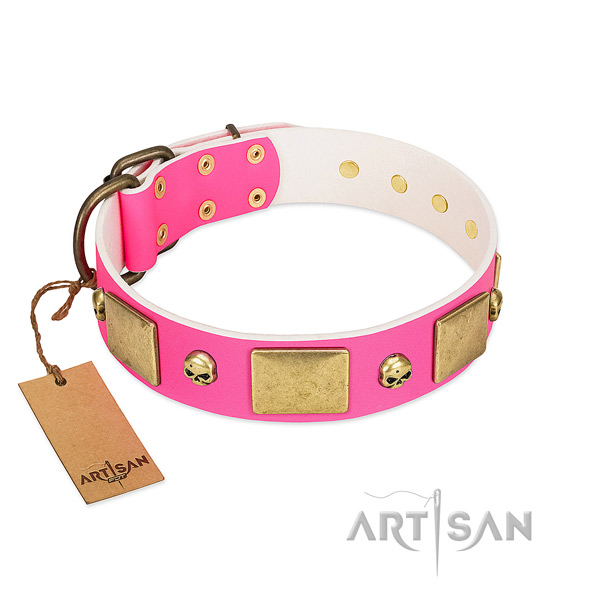 Reliable genuine leather collar with corrosion resistant adornments for your canine