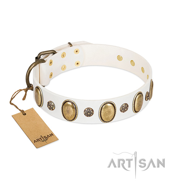 Daily use flexible genuine leather dog collar with adornments