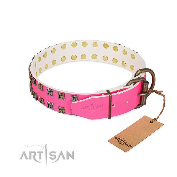 Natural leather collar with inimitable studs for your doggie