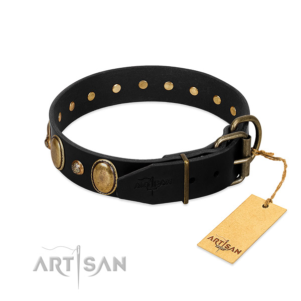 Corrosion proof fittings on full grain natural leather collar for stylish walking your dog