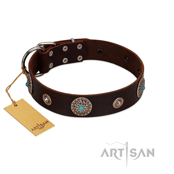 Quality full grain leather dog collar made for your four-legged friend