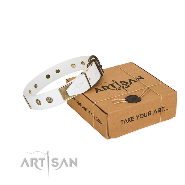 Corrosion proof buckle on dog collar for comfortable wearing