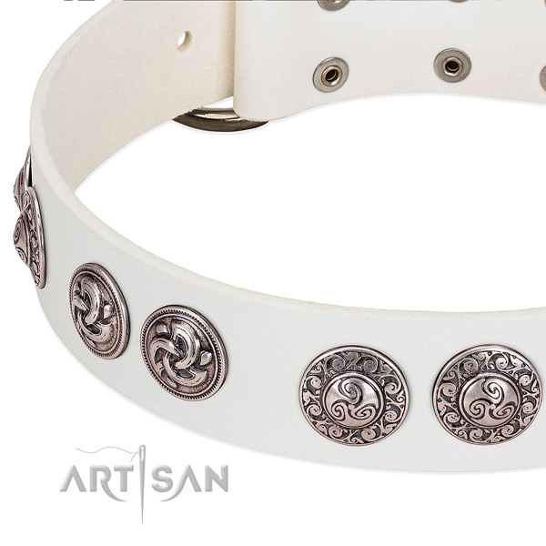Exceptional full grain leather dog collar for fancy walking