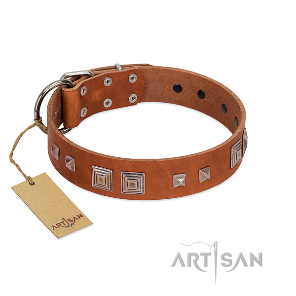 Corrosion proof D-ring on genuine leather dog collar for daily use