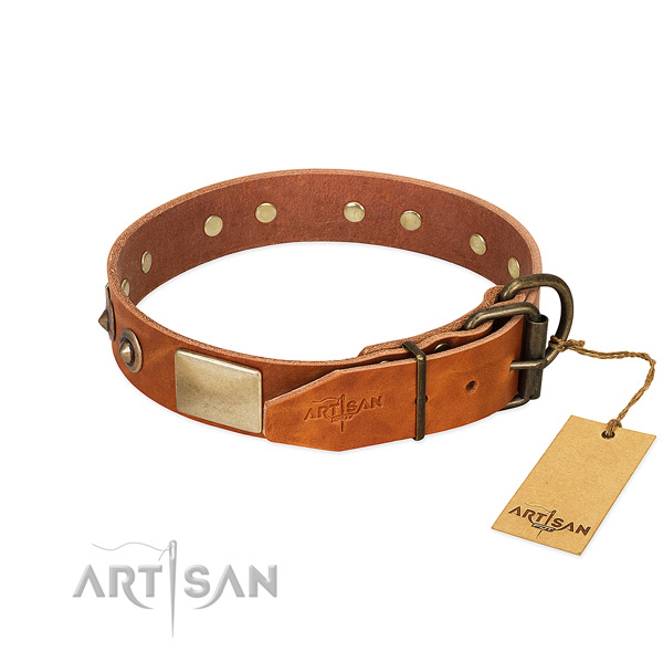 Rust-proof hardware on basic training dog collar