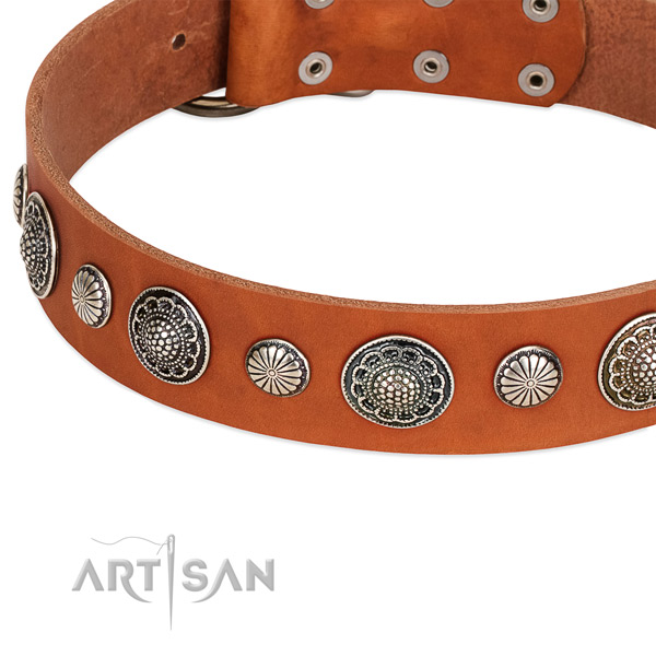 Full grain genuine leather collar with corrosion resistant hardware for your attractive four-legged friend
