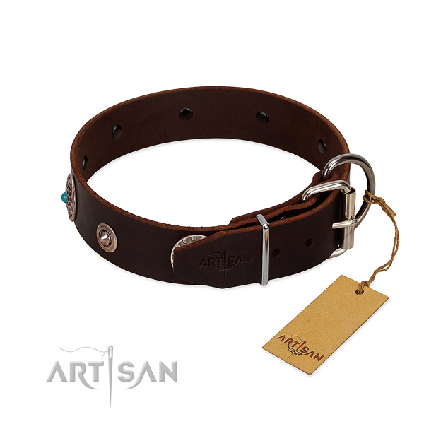 Stylish adorned natural leather dog collar