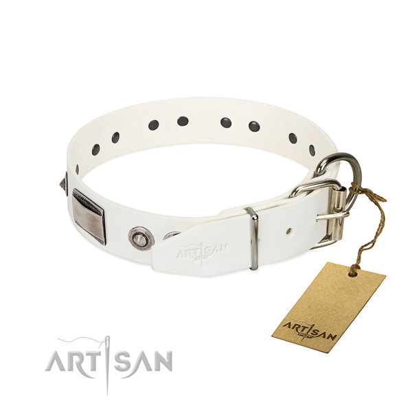 Trendy dog collar of natural leather with decorations