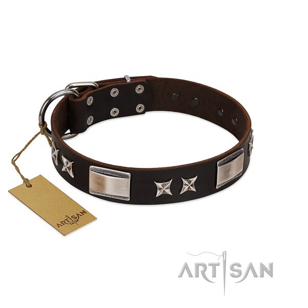 Handmade dog collar of leather