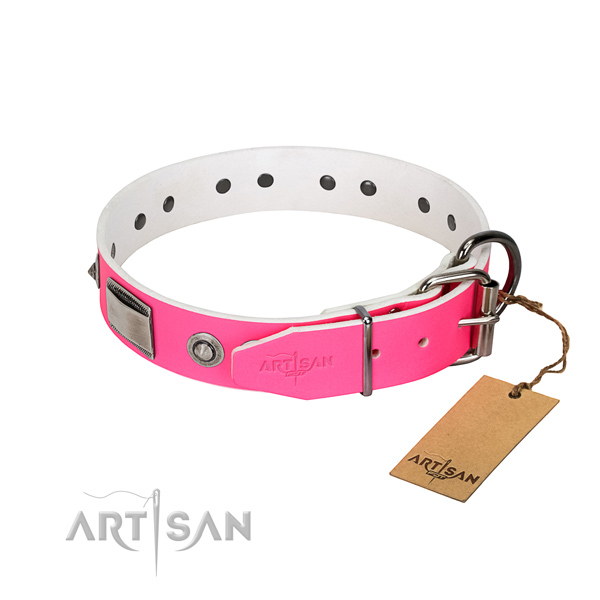 Unusual full grain natural leather collar with adornments for your four-legged friend