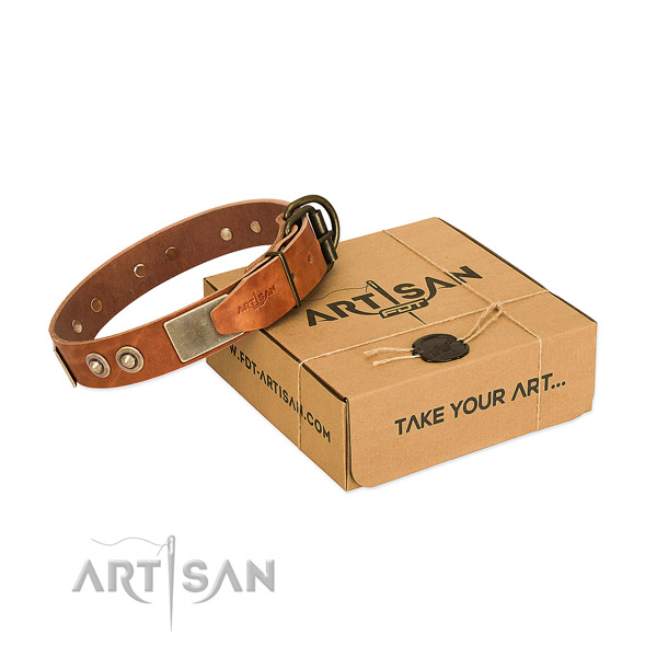 Rust resistant decorations on dog collar for basic training
