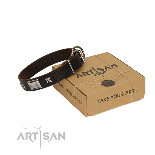 Top quality collar of full grain genuine leather for your stylish dog