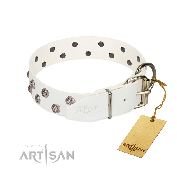 Rust-proof buckle on decorated genuine leather dog collar