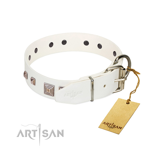 Exquisite collar of full grain genuine leather for your beautiful canine