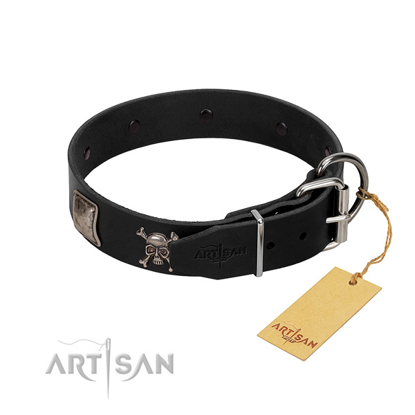 Top notch leather collar for your attractive canine