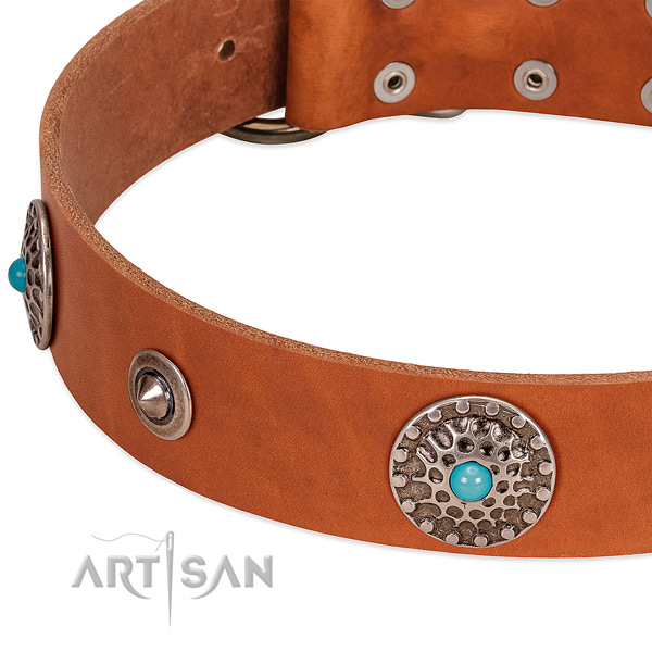 Everyday use soft to touch full grain natural leather dog collar with studs