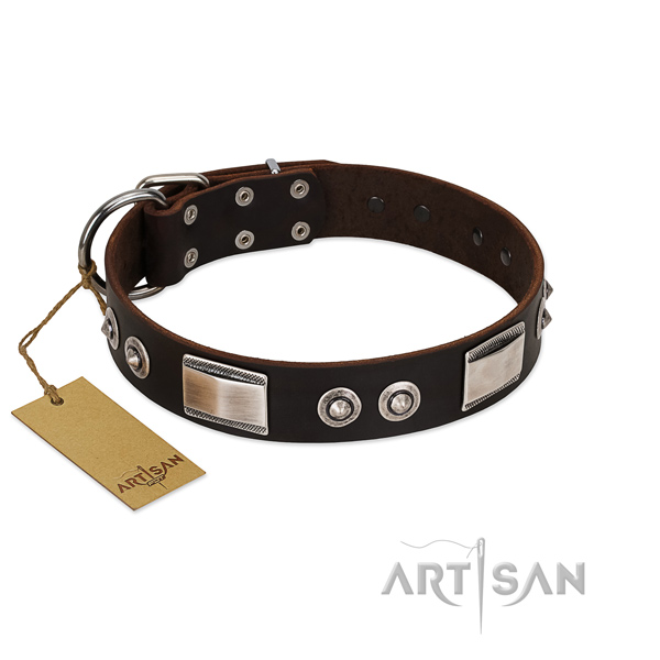 Designer collar of full grain leather for your doggie