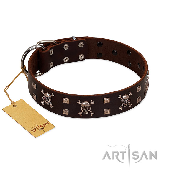 Soft full grain genuine leather dog collar handcrafted for your canine