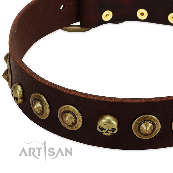 Amazing adornments on natural leather collar for your dog