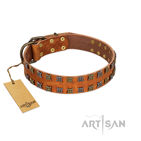Soft to touch full grain genuine leather dog collar with decorations for your doggie