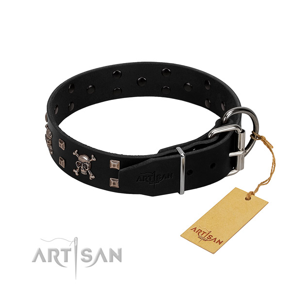 Impressive full grain genuine leather dog collar with corrosion proof embellishments